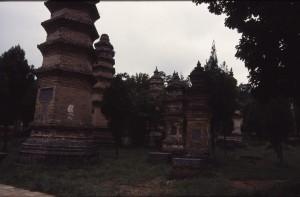 Den alten Meistern, die im Pagodenwald des Shaolin-Klosters bestattet sind, werden besondere Chi-Kräfte zugeschrieben. (Quelle: Holm Hümmler)