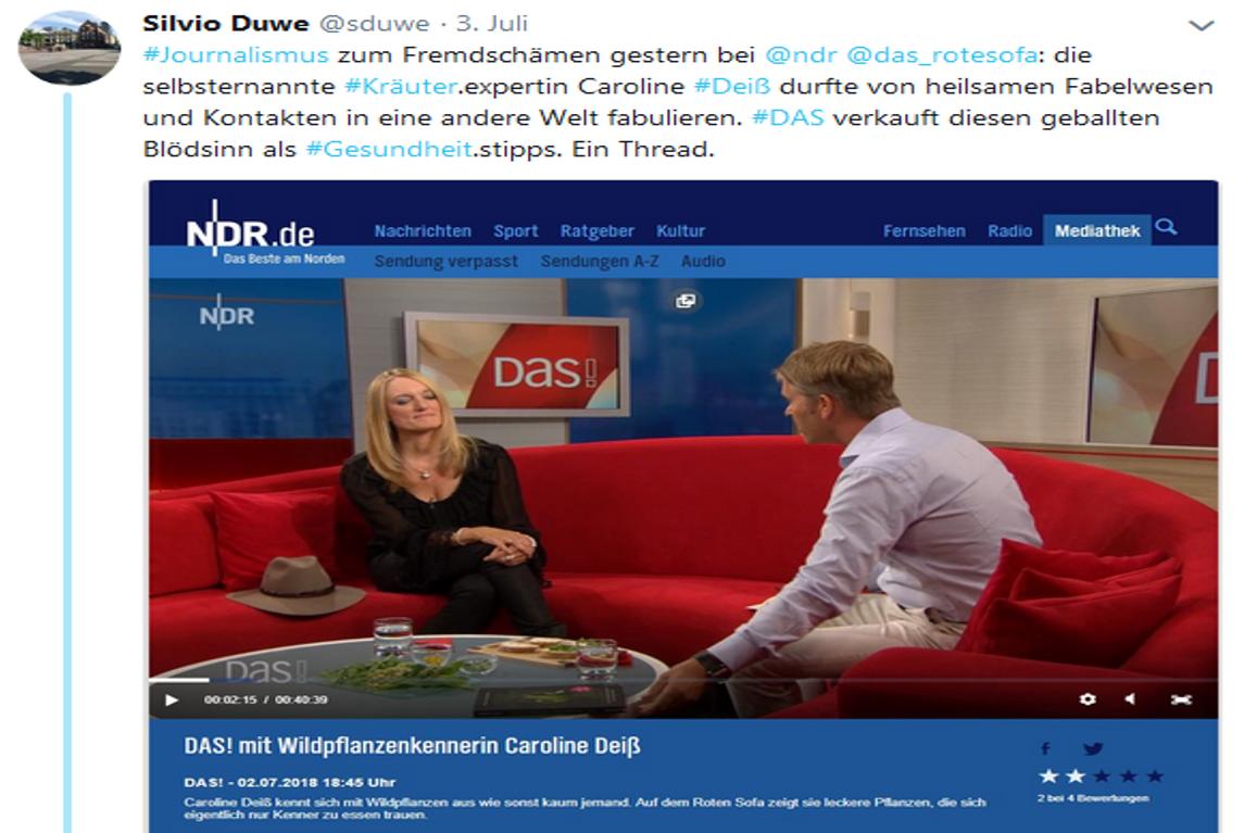 Prof Sprout Auf Dem Roten Sofa Elfen Zwerge Spontanheilungen